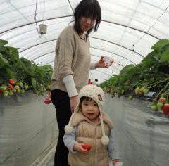 あかまつ農園 15-HOUSE